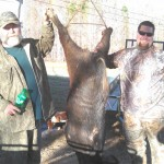 Mike Palmer (left) and Allen Manues (right) pose with a moster boar hog taken on the club on November 18th.  Both had encountered this big guy and Allen was finally able to take the hog down.  In the end, it took three shots from a 45/70 to stop the 285lb hog.